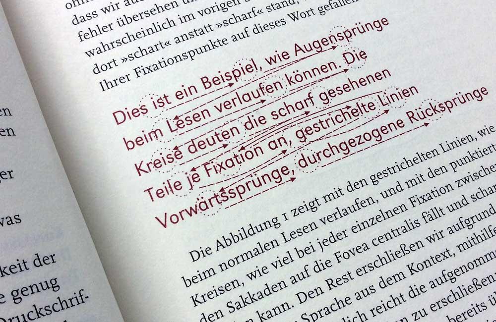 Fixationen, Regressionen und Sakkaden: »Dies ist ein Beispiel, wie Augensprünge beim Lesen verlaufen können. Die Kreise deuten die scharf gesehenen Teile je Fixation an, gestrichelte Linien Vorwärtssprünge, durchgezogene Rücksprünge«. Bildzitat: Prof. Dirk Wendt, Lesbarkeit von Druckschriften, Ein Beitrag zum Symposium der Typografischen Gesellschaft München am 13. und 14. November 1998. Die Zusammenfassung als Buch erschienen im Jahre 2000 unter dem Titel