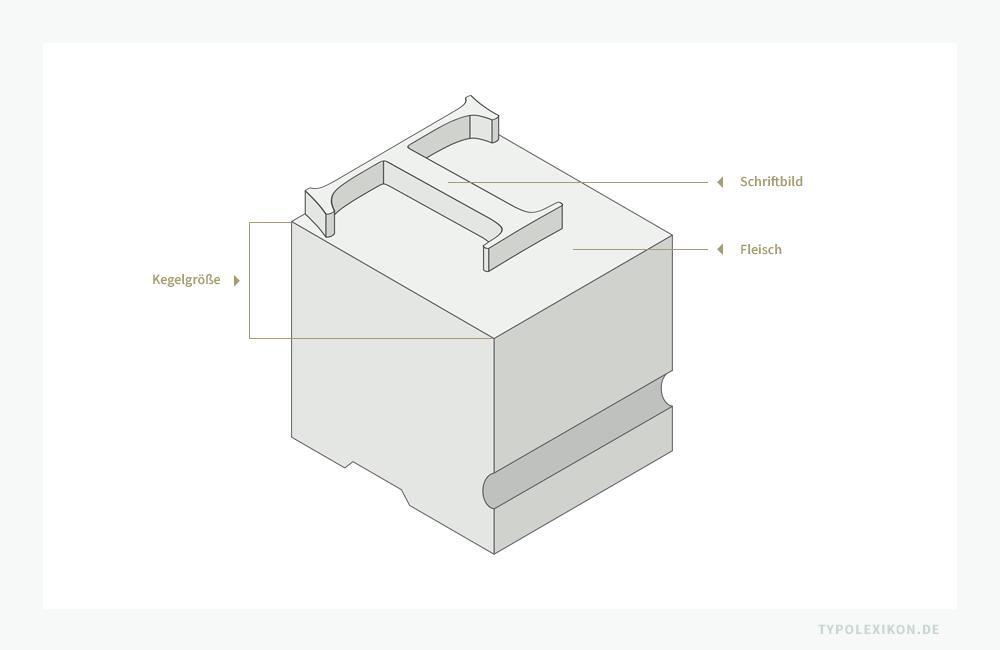 Der Schriftkegel einer physischen Drucktype umfaßt den erhabenen, druckenden Teil und das »Fleisch«, also den nichterhabenen, nichtdruckenden Teil eines Buchstabens.