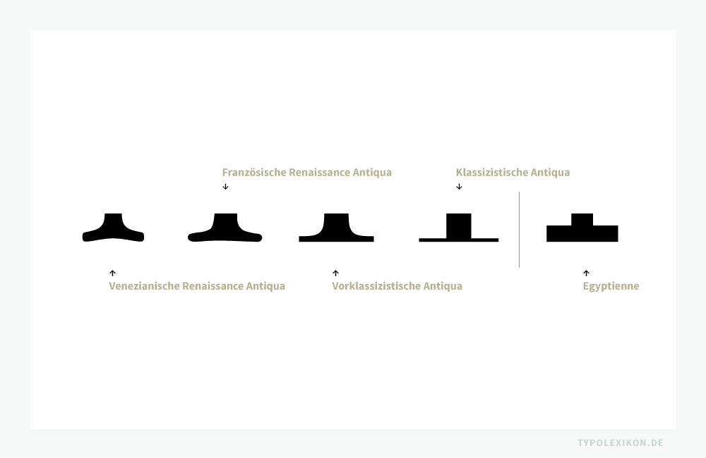 In der chronologischen Aneinanderreihung wird ersichtlich, wie sich die Serifen von Antiquas seit der Inkunabelzeit verändert haben. Insbesondere die Serifenunterkanten entwickeln sich von stark gekehlt bis gerade auf der Grundlinie stehend. Im Beispiel von links: Stempel Schneidler von Friedrich Hermann Ernst Schneidler (1882–1956), Amsterdamer Garamond von Morris Fuller Benton (1872–1948), Baskerville von John Baskerville (1706–1775), Linotype Didot und Glypha jeweils von Adrian Frutiger (1928–2015), alle im normalen Schriftschnitt.