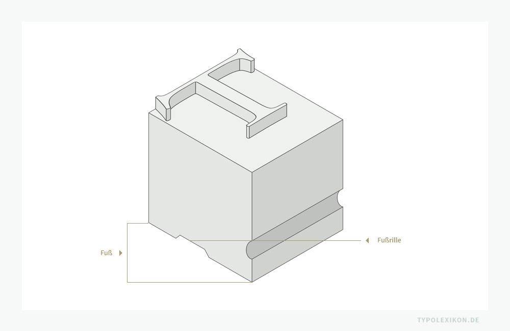 Fuß und Fußrille (auch Anguß oder Gießrille) eines Schriftkegels einer physischen Drucktype aus Metall (z.B. aus einer Blei-Zinn-Antimon-Legierung) oder Holz (z.B. Plakatschrift).