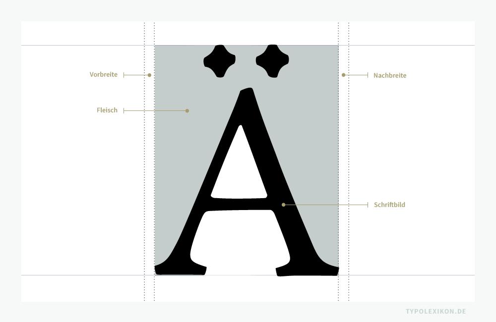 Die Vor- und Nachbreite eines Schriftzeichens grenzt bei digitalen Fonts direkt an das Fleisch bzw. an das Schriftbild, wird aber – im Gegensatz zu physischen Drucktypen – selbst nicht als Fleisch bezeichnet.